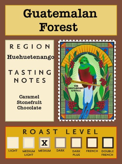 Guatemalan Forest